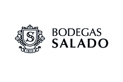 Logos Clientes 0002 Salado - Business training -